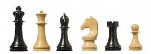 PIEZAS DE AJEDREZ  ELECTRÓNICAS DGT FIDE