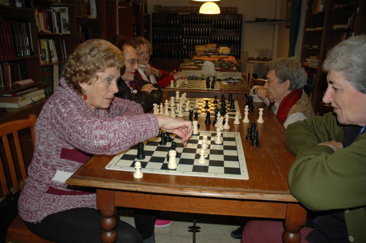 Juego de ajedrez gigante para el jardin for Ajedrez gigante jardin