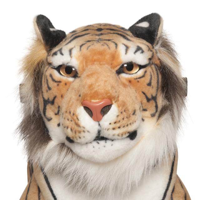 Tigre Shirkan Grande - zoom cabeza vista frontal