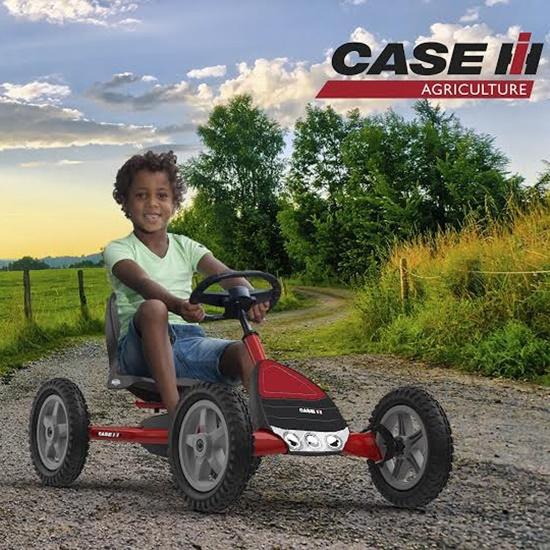 Kart Berg Buddy Case Ih-1 width=