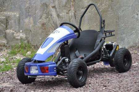 kart eléctrico 500w 36v blue pekecars width=